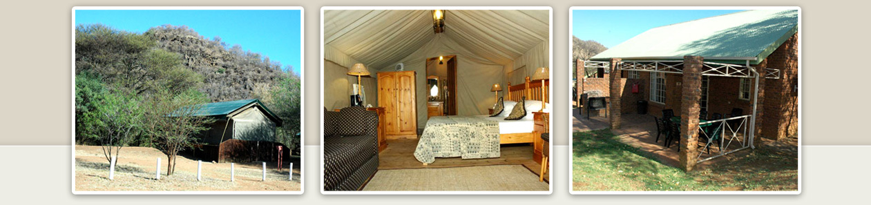 Pilanesberg Game Reserve Bakgatla Resort Executive Safari Tents Bed Chalets Budget Luxury Accommodation Malaria Free Big Five