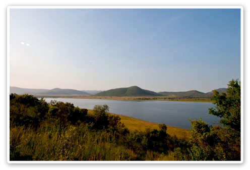 Pilanesberg Reserve Dam Buffalo Thorn Lodge Malaria Free Big Five Pilanesberg Game Reserve Accommodation Booking