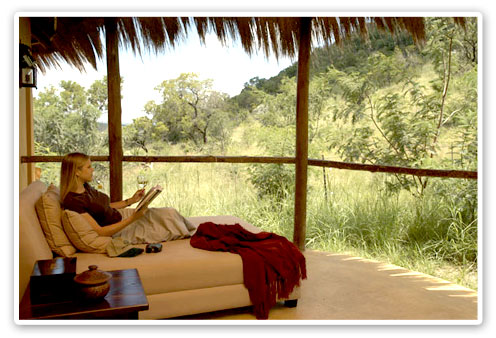 Pilanesberg Game Reserve Accommodation Booking Private Deck Ivory Tree Game Lodge Malaria Free Big Five
