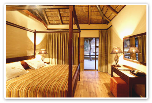 Standard Suite Ivory Tree Game Lodge Malaria Free Big Five Pilanesberg Game Reserve Accommodation Booking