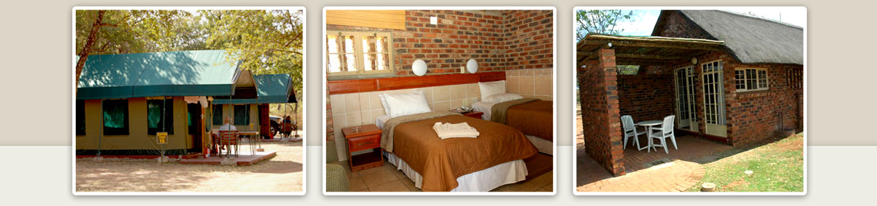 Manyane Resort Chalets Exclusive Safari Tents Caravan Camp Sites Malaria Free Big Five Pilanesberg Game Reserve Accommodation Booking