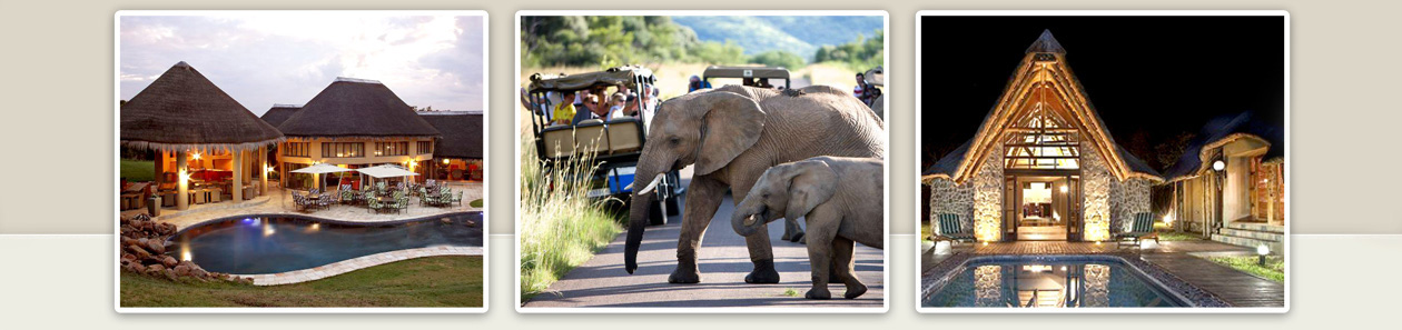 Pilanesberg National Park Pilanesberg Safari Big 5 Five Pilanesberg Game Reserve Accommodation Booking