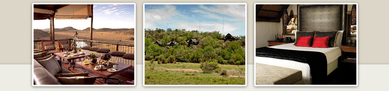 Tshukudu Bush Lodge Luxury Accommodation Malaria Free Big Five Pilanesberg Game Reserve Accommodation Booking