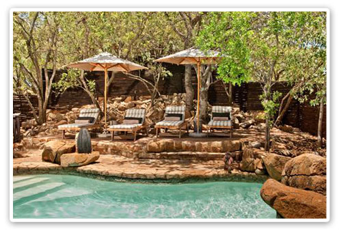 Swimming Pool Tshukudu Bush Lodge Malaria Free Big Five Pilanesberg Game Reserve Accommodation Booking
