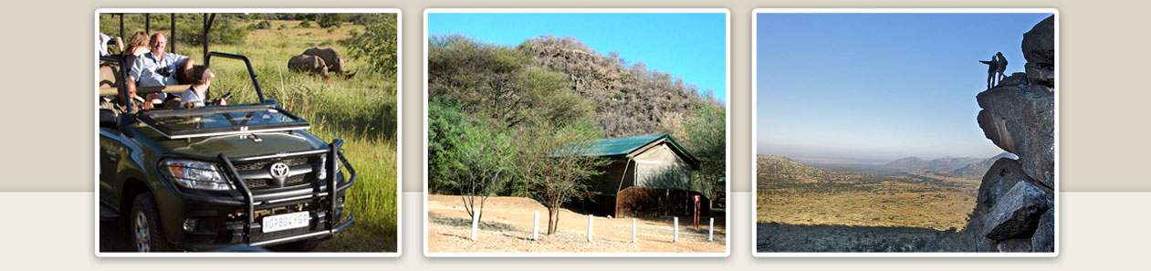Pilanesberg Accommodation Booking Holiday Safari bookings Malaria Free Big Five Pilanesberg National Park